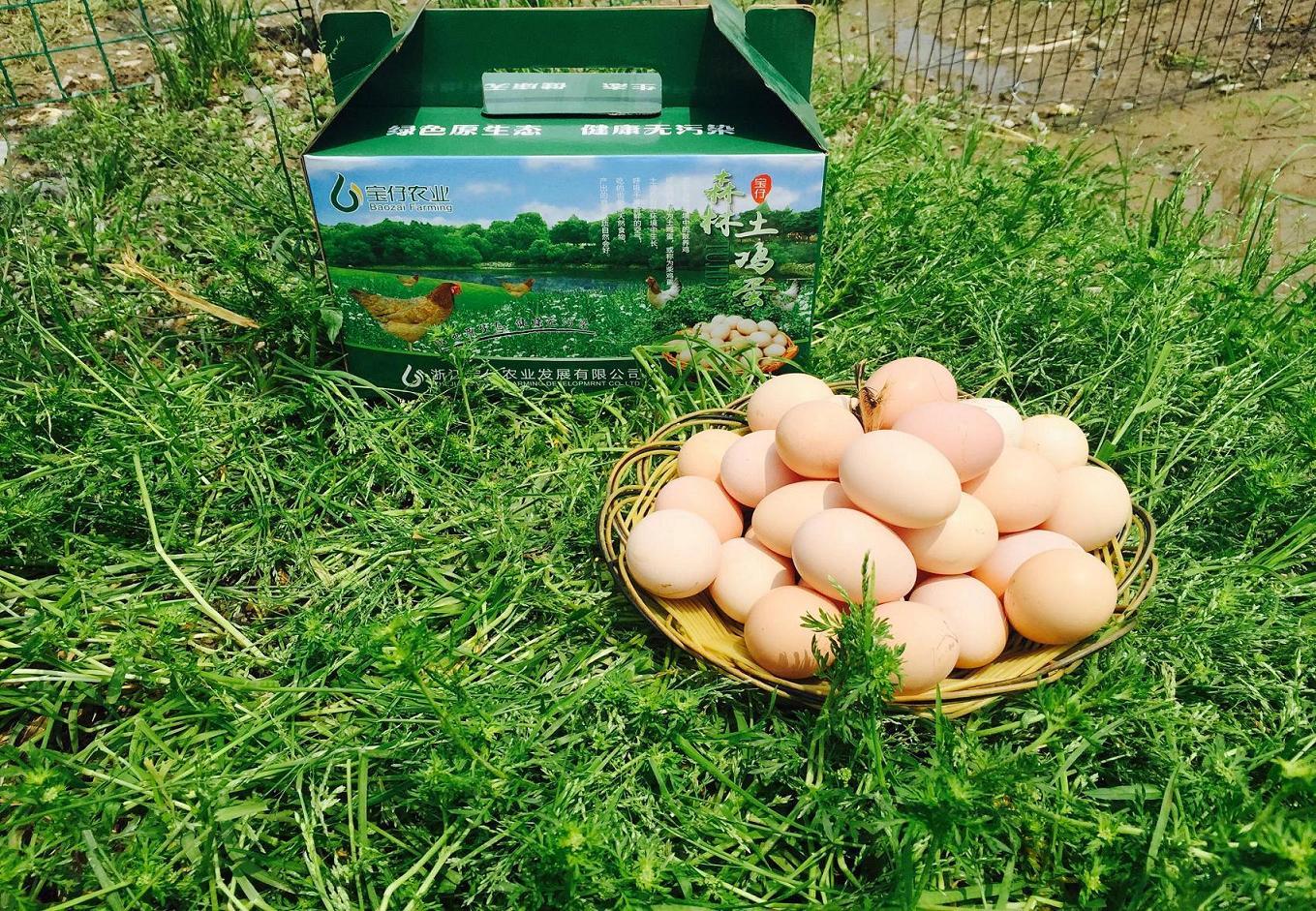 寶崽森林土雞蛋